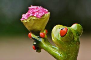 rana verde ramo flores